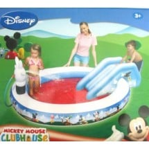 Mickey Mouse House Pool